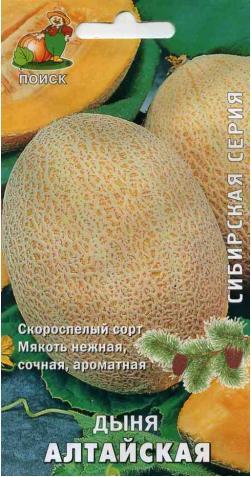 Дыня «Алтайская»