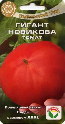 Томат «Гигант Новикова» розовый