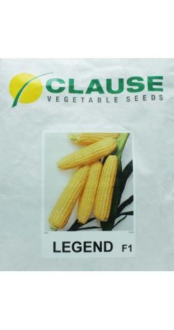 Кукуруза «Леженд F1» Clause (Голландия)