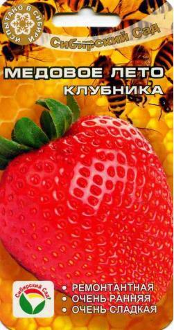 Клубника «Медовое лето»
