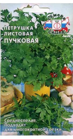 Петрушка «Пучковая» листовая