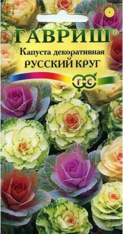 Капуста декоративная «Русский круг» смесь