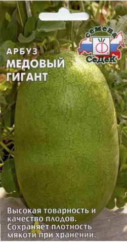 Арбуз «Медовый Гигант»