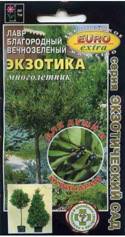 Лавр «Экзотика» (Лавровый лист)