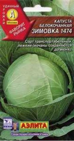 Капуста б/к «Зимовка 1474»