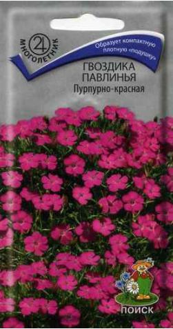 Гвоздика павлинья «Пурпурно-Красная»