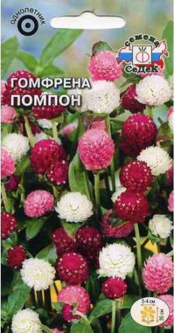 Гомфрена «Помпон»