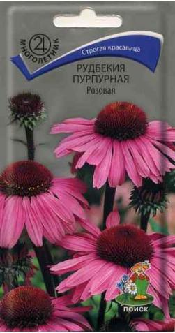 Рудбекия (Эхинацея) «Розовая»