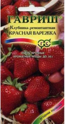 Клубника «Красная варежка» ремонтант.
