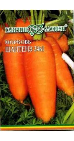 Морковь на ленте «Шантане»