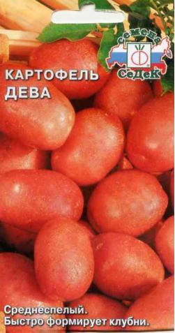 Картофель «Дева»