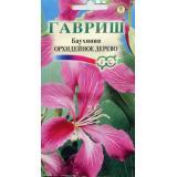 Баухиния «Орхидейное дерево»