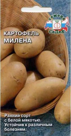 Картофель «Милена»