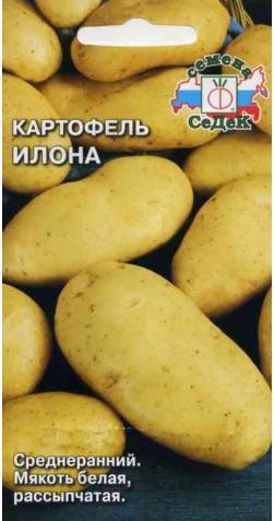 Картофель «Илона»