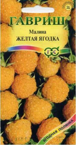 Малина «Желтая ягодка»