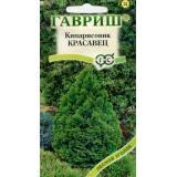 Кипарисовик «Красавец» (вечнозеленый)