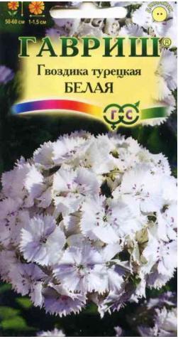 Гвоздика турецкая «Белая»