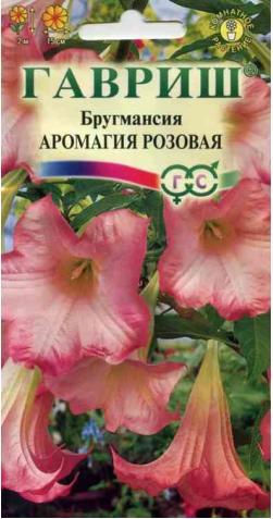 Бругмансия «Аромагия Розовая»