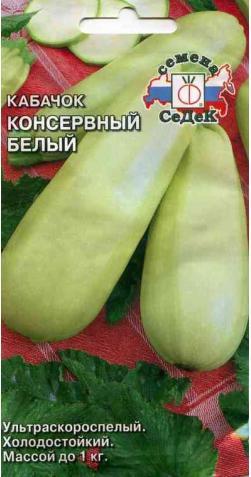 Кабачок «Консервный» белый