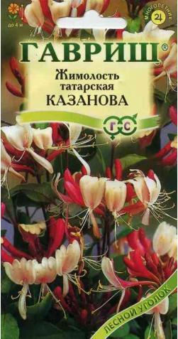 Жимолость татарская «Казанова»