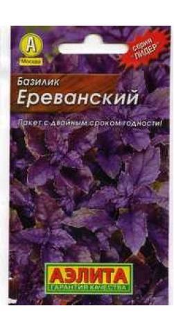 Базилик овощной «Ереванский».