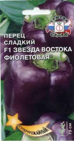 Перец «Звезда Востока F1» фиолетовый.
