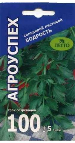 Сельдерей листовой «Бодрость».