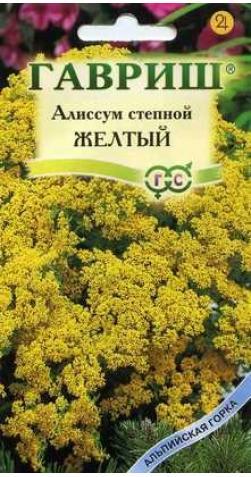 Алиссум степной «Желтый»
