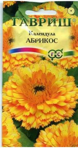 Календула лекарственная «Абрикос»