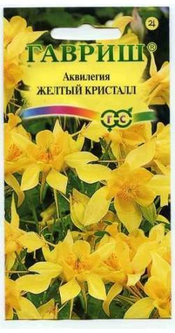 Аквилегия «Желтый кристалл»