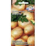 Картофель «Ассоль».