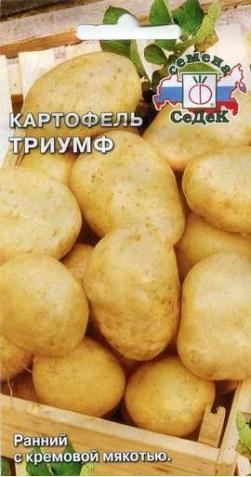 Картофель «Триумф».