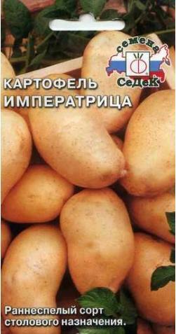 Картофель «Императрица».