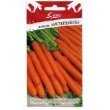 Морковь «Амстердамска»
