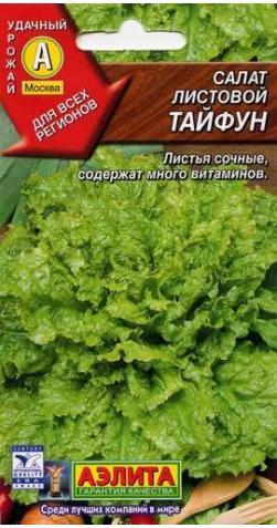 Салат листовой «Тайфун»