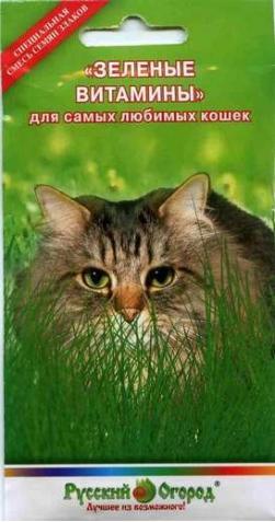 Зеленые витамины для Кошек