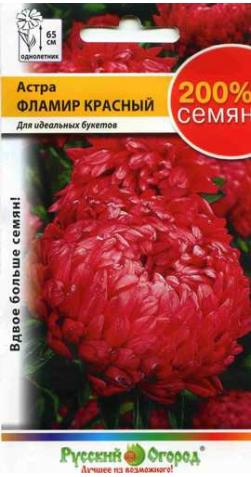 Астра «Фламир» красная