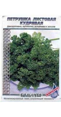 Петрушка кудрявая листовая