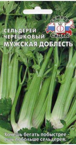 Сельдерей черешковый «Мужская доблесть».