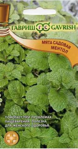 Мята садовая «Ментол»