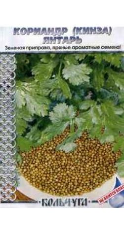 Кориандр (Кинза) «Янтарь»