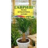 Нолина «Бутылочное дерево»