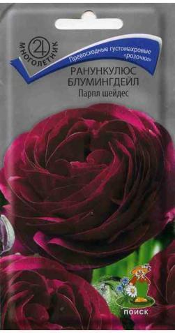 Ранункулюс «Блумингдейл» парпл шейдес